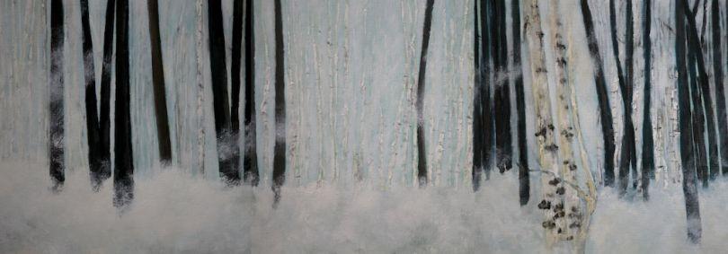 Berkenbos in sneeuw
